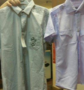 Новые турецские рубашки