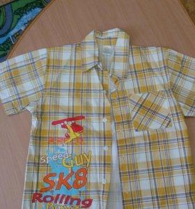 Рубашка разноцветная. Новая