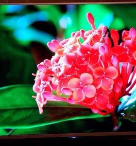 Телевизор Sony 152 см