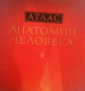 Атлас анатомии человека ,Синельников