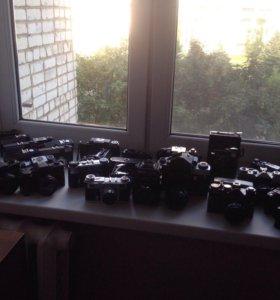 Коллекционные фотоаппараты в ассортименте