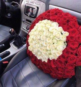 Розы кругом 101 штука
