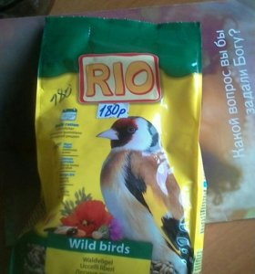 Корм для лесных птиц