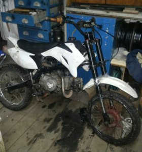 Pitster pro 125