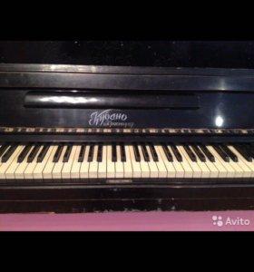 Фортепиано Кубань