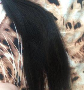 Волосы словянка
