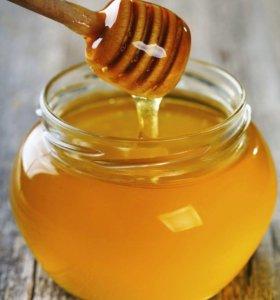 Соты и майский мед