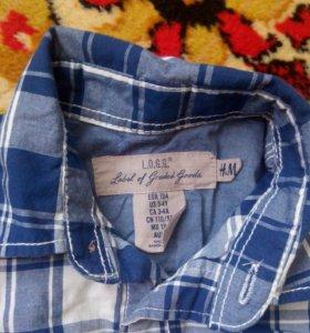 Рубашка H@M для мальчика 3-4 года