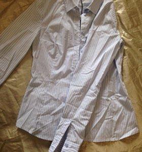 Женская блузка XS
