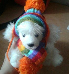 Шапочка и шарфик для щенков