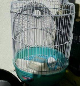 Клетка для попугая,холодильник-витрина,стол 80*134