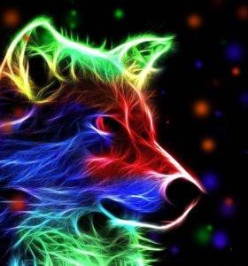 Набор для рисования красками Неоновый волк