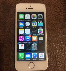 iPhone 5s(16g)