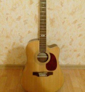 Гитара с термочехлом