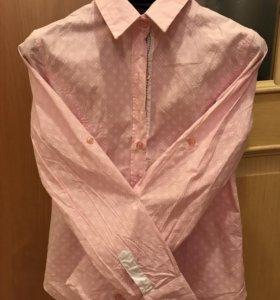 Рубашка kularium хлопок