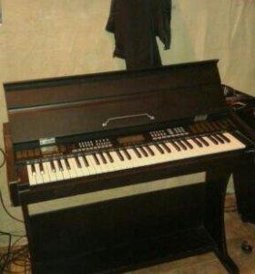 Электро пианино