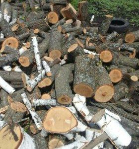 Продаю дрова дубовые не колытые