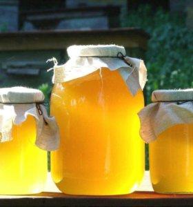 Душистый мёд со своей пасеки