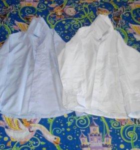 2 Рубашки.