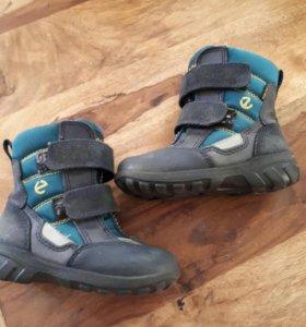 Мембранные ботинки экко 24 р