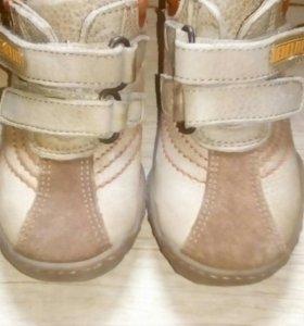 Ботинки Bebelite
