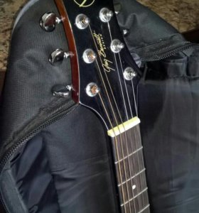 Акустическая гитара Samick D-2/N