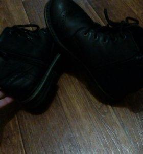 Ботинки кожа Castler