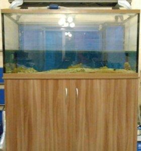 Продам морской аквариум 432 литра