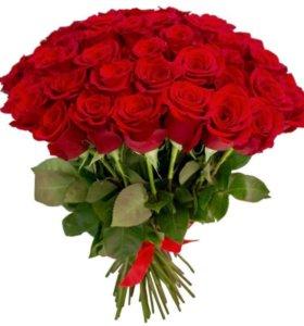 Красные розы ( цветы )