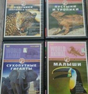 Фильмы о животных бесплатно