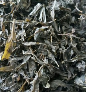 Иван-чай 《Кипрей обыкновенный》