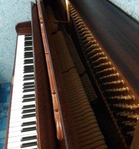Немецкое пианино торг уместен