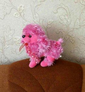 Розовая собачка