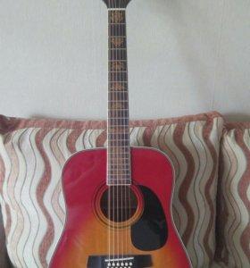 12-струнная гитара