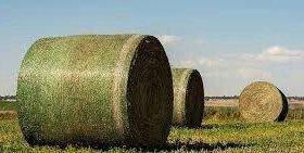 Сеновязальная сетка для упаковки сена и соломы.