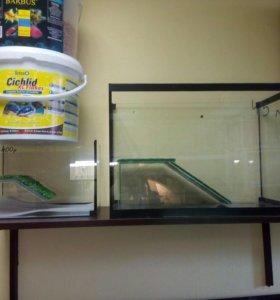 Аквариумы для черепах