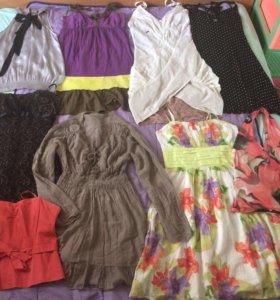Блузки, рубашки, топы, кофты, юбки, брюки 42-44-46