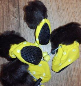 Мягкие ботиночки для собак