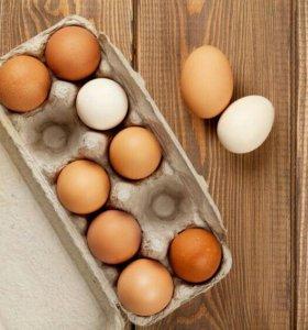 Яйцо пищевое.