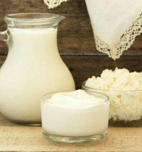 молоко,сметана,творог, сливочное масло