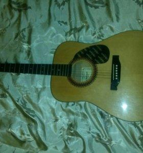 Акустическая гитара,Hohner Established