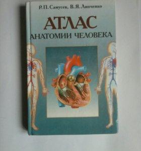 Атлас анатомии человека Р.П. Самусев