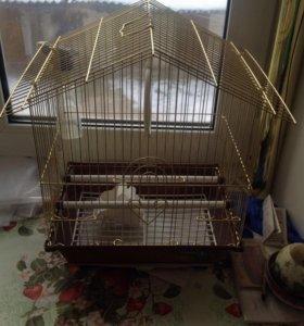 продам клетку доя попугаев