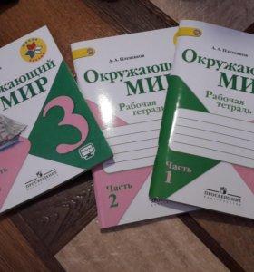 Учебник и рабочие тетради