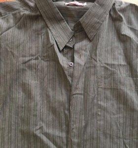 Рубашка мужская большой размер