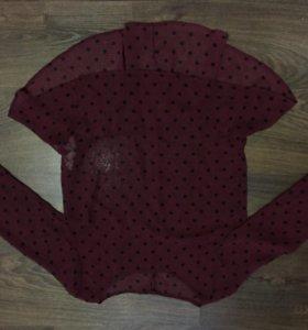 Блузка бершка