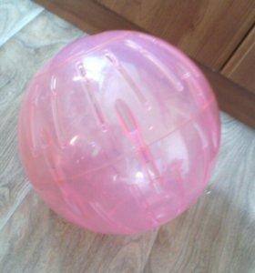 Большой шар для прогулок морской свинки