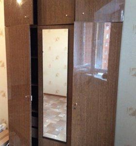 шкаф платянной полированный