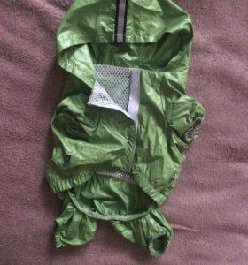 Одежда для собак мелких пород. Дождевик (М)