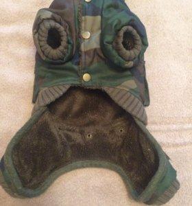 Одежда для собак мелких пород. Комбинезон/куртка